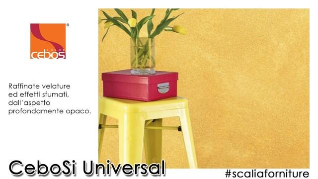 universal-4